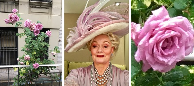 Lavender roses and SuEllen Estey in MY FAIR LADY costume